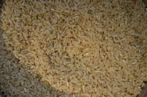 Rice grown by farmer Prakash